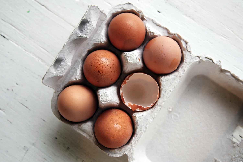 eggs-