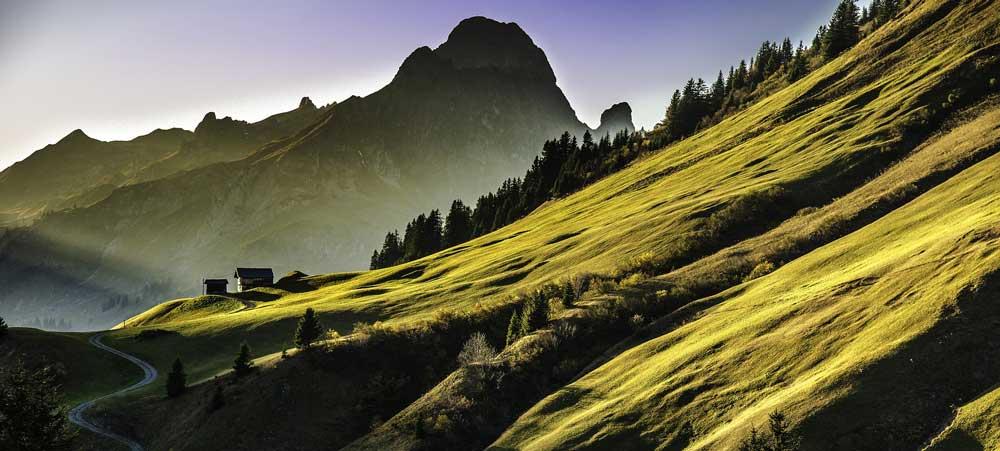green-landscape.jpeg
