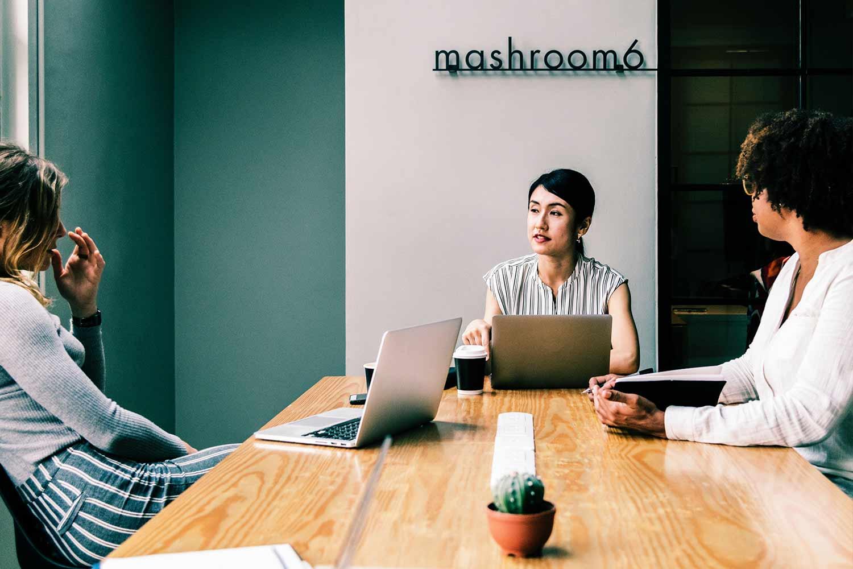 mashroom-6-meeting-