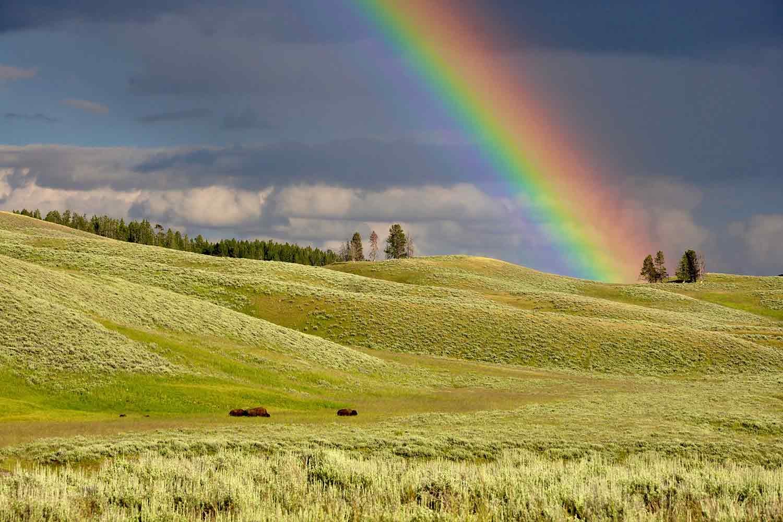 rainbow-over-fields